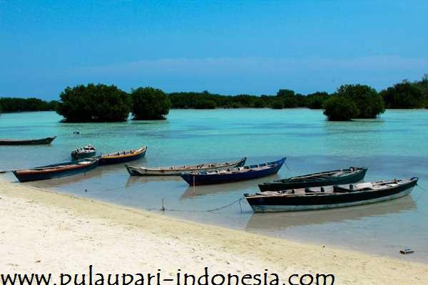 rf-travel-pulau-pari